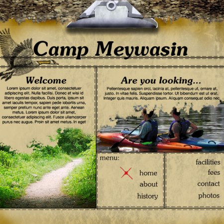 camp_meywasin_fuzzy